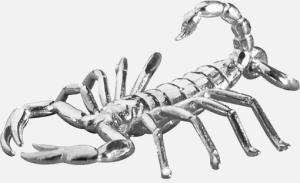 scorpio_1a